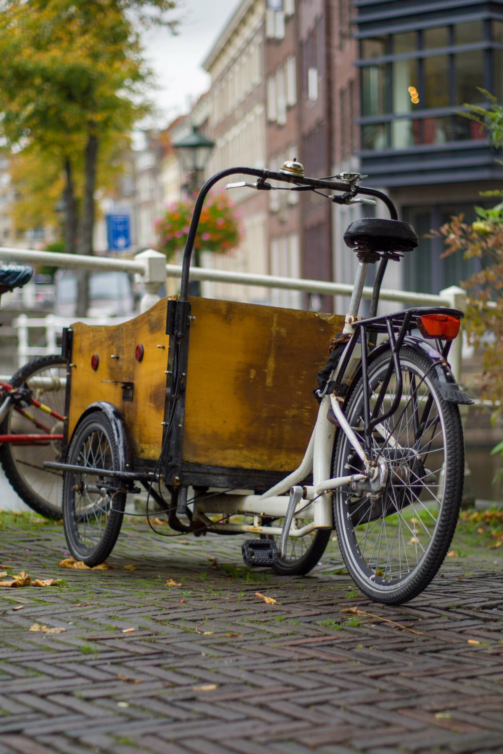 Tricycles adultes